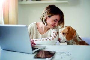 Eine Frau sitzt am Schreibtisch und arbeitet am Laptop. Neben ihr sitzt ein Bürohhund.