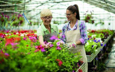 Altersteilzeit: Zusatzverdienst im Ruhestand