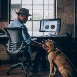 Mann am Schreibtisch mit Bürohund.